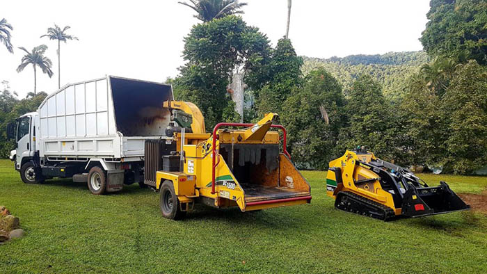 tree removal cairns equipment